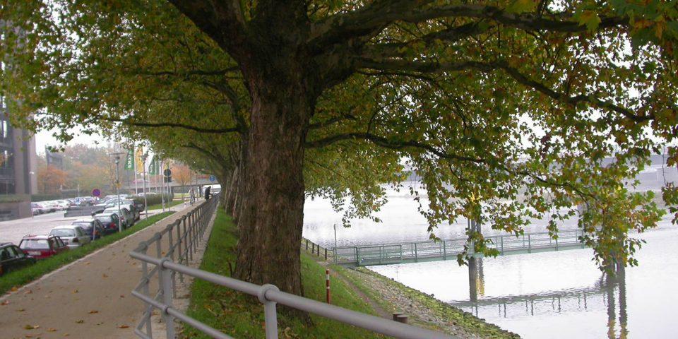 Weseruferpromenade Am Deich
